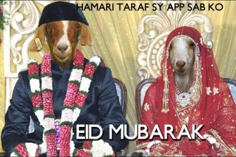 funny20bakras2020he20goat20pictures20for20eid20ul20azha20funny20animal20pictures201